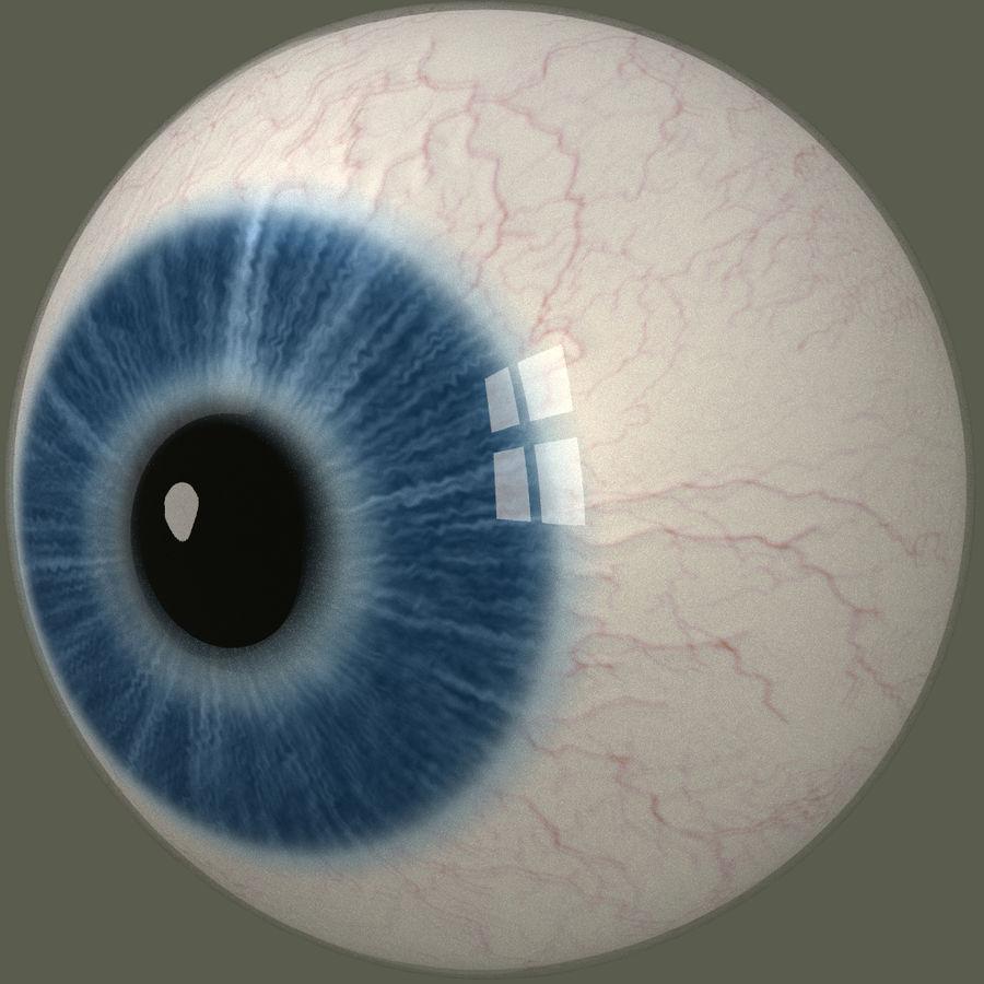 Человеческий глаз royalty-free 3d model - Preview no. 4