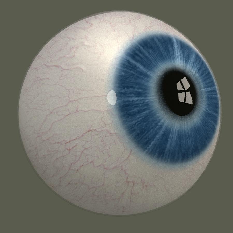 Человеческий глаз royalty-free 3d model - Preview no. 5