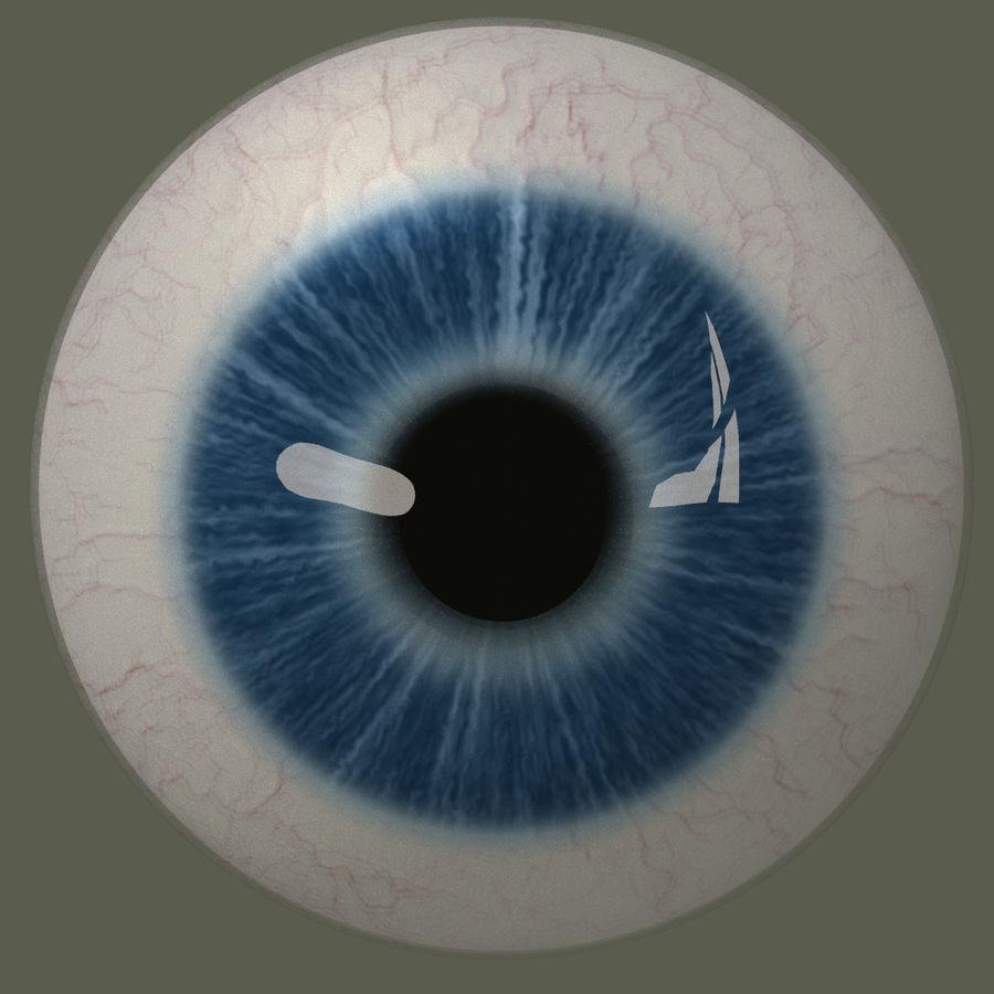 Человеческий глаз royalty-free 3d model - Preview no. 1