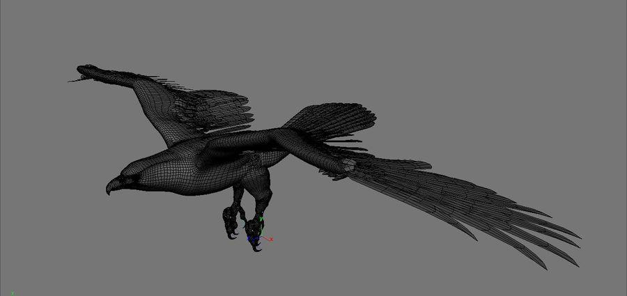 Aquila royalty-free 3d model - Preview no. 8