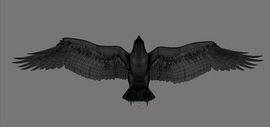 Aquila royalty-free 3d model - Preview no. 9