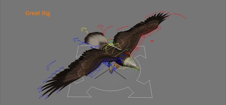 Aquila royalty-free 3d model - Preview no. 10