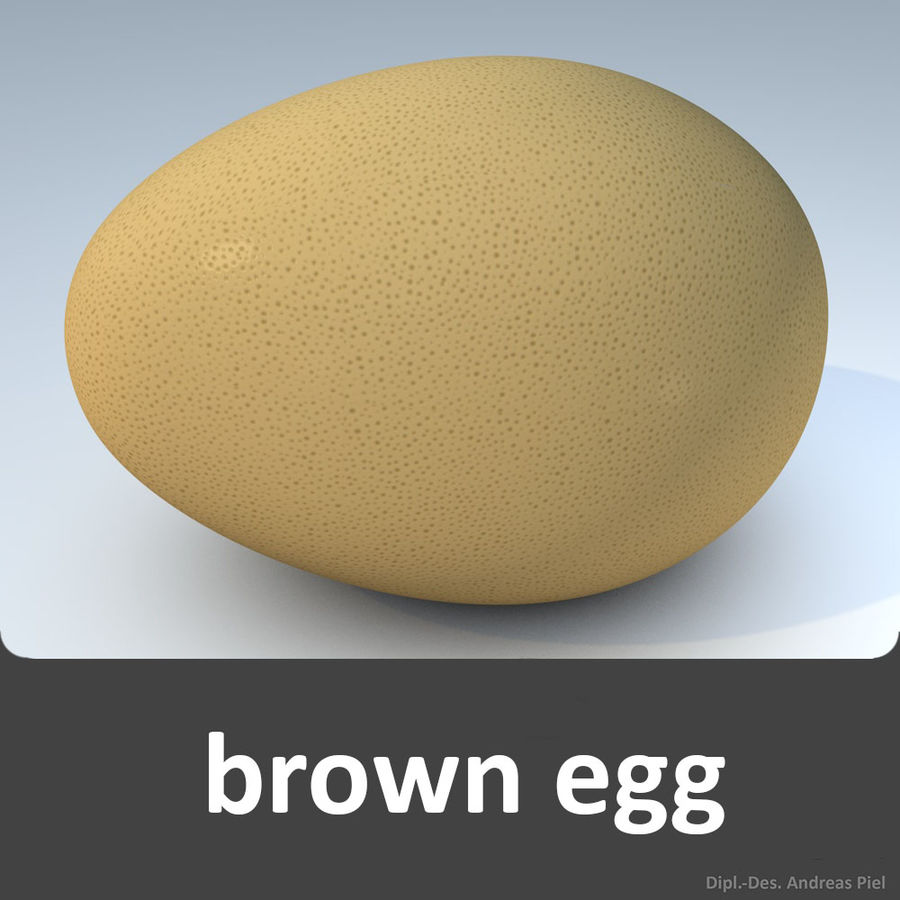 brown egg royalty-free 3d model - Preview no. 1