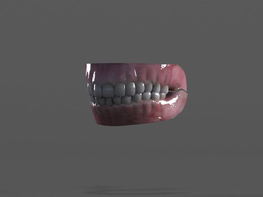 牙齿和牙龈 royalty-free 3d model - Preview no. 3