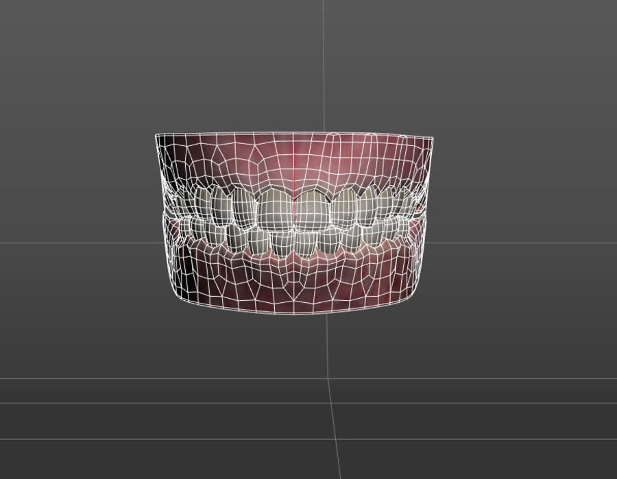 牙齿和牙龈 royalty-free 3d model - Preview no. 4