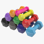 Dumbbell Weights Set Generic 3d model