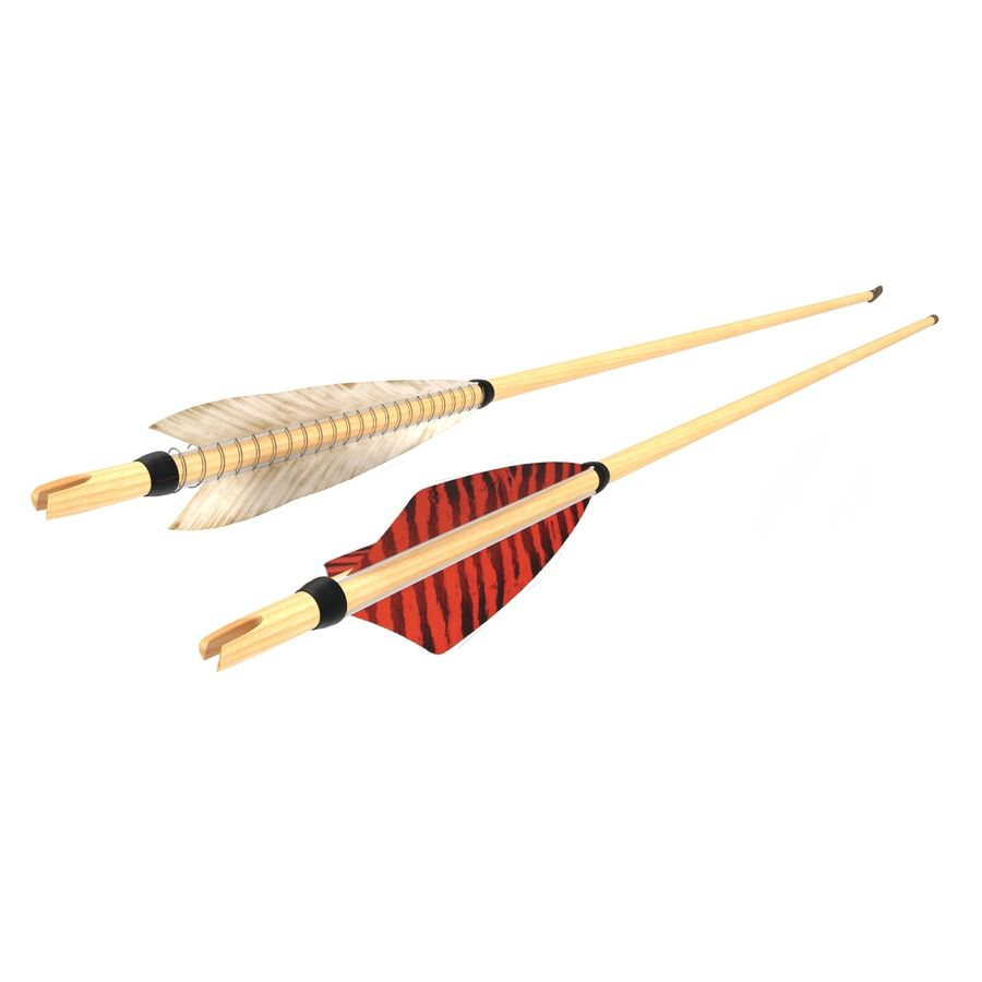 Bow Arrows Set royalty-free 3d model - Preview no. 9