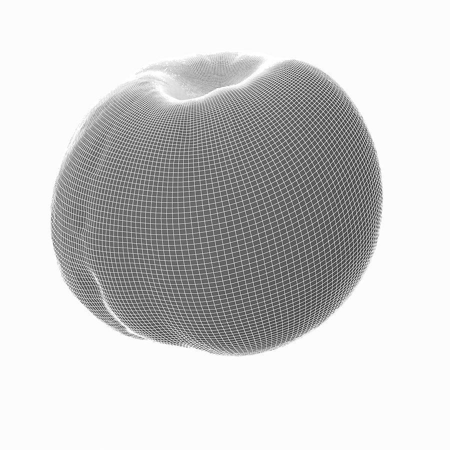 Tropikalna realistyczna brzoskwinia royalty-free 3d model - Preview no. 26