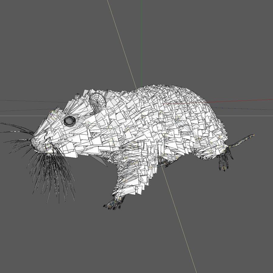 Rat/Mouse Black Walking Pose royalty-free 3d model - Preview no. 9