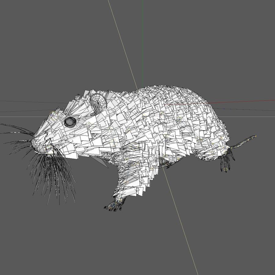 Крыса / мышь черная поза royalty-free 3d model - Preview no. 9