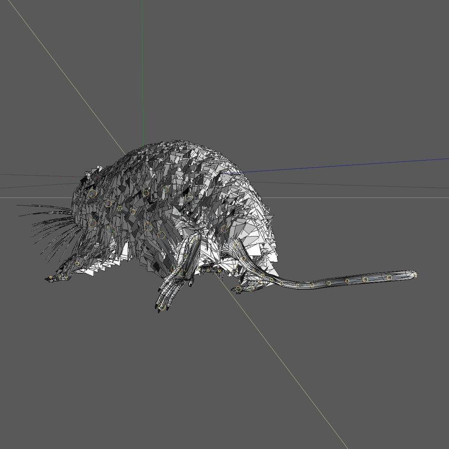 Rat/Mouse Black Walking Pose royalty-free 3d model - Preview no. 10