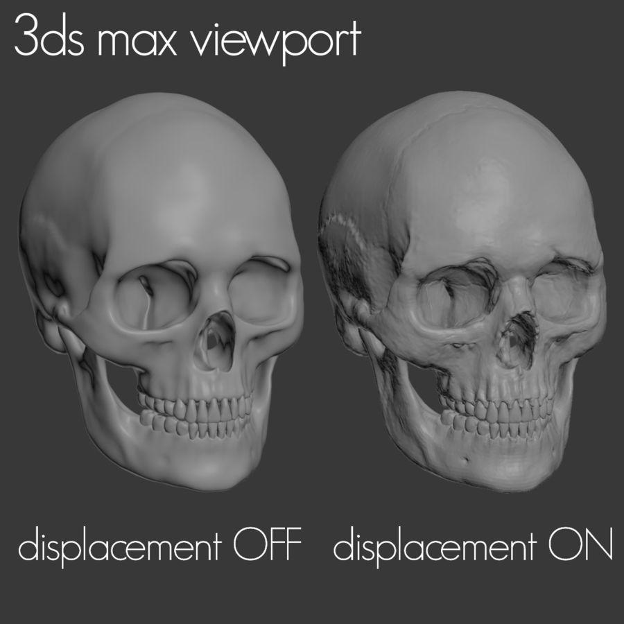 Caucasoid Female Skull royalty-free 3d model - Preview no. 19