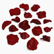 Расширенное восстановление лепестков розы 3d model