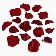 Rose Petals Extended Reconstruir 3d model