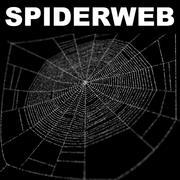 Toile d'araignée 1 3d model