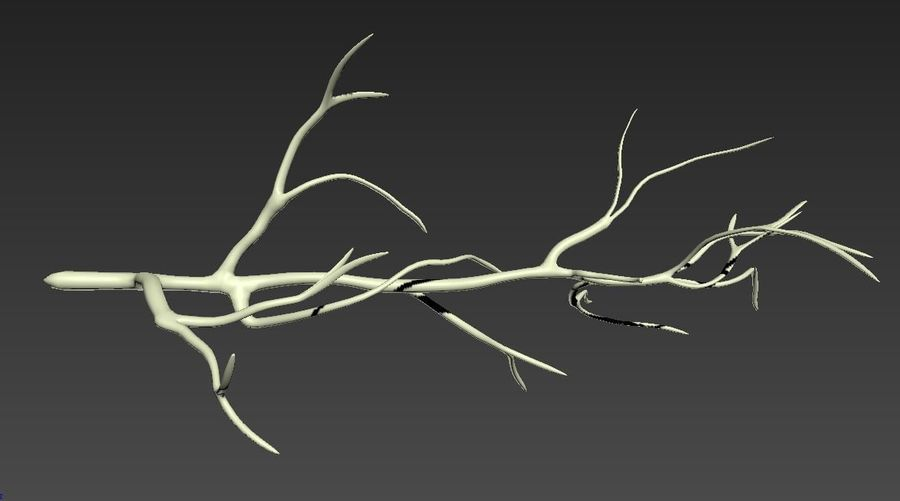 branch_tree_trunk royalty-free 3d model - Preview no. 4