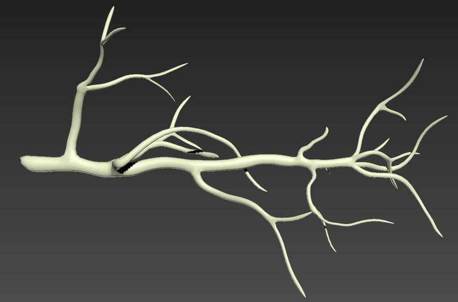 branch_tree_trunk royalty-free 3d model - Preview no. 6