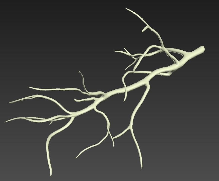 branch_tree_trunk royalty-free 3d model - Preview no. 7