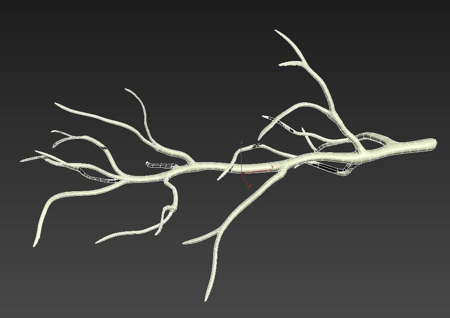 branch_tree_trunk royalty-free 3d model - Preview no. 11