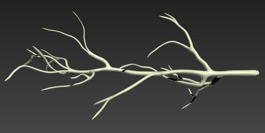 branch_tree_trunk royalty-free 3d model - Preview no. 2