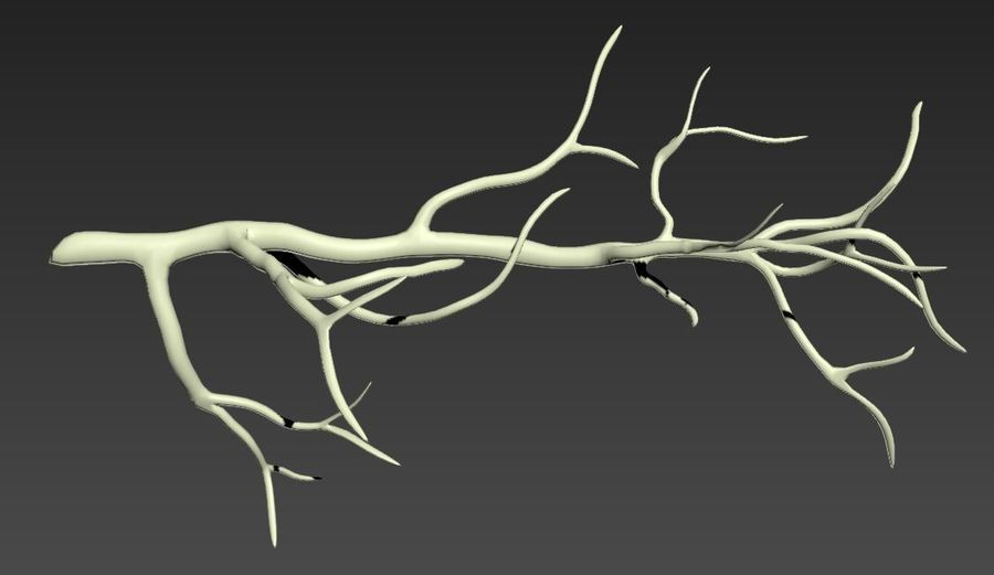 branch_tree_trunk royalty-free 3d model - Preview no. 5