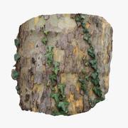 나무 껍질 2 3d model