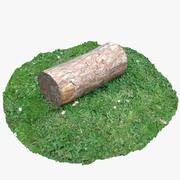 树日志2 3d model