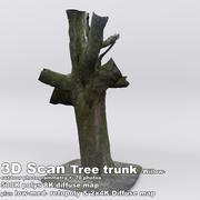 Tronc d'arbre à balayage 3D DBuzzi Willow 3d model