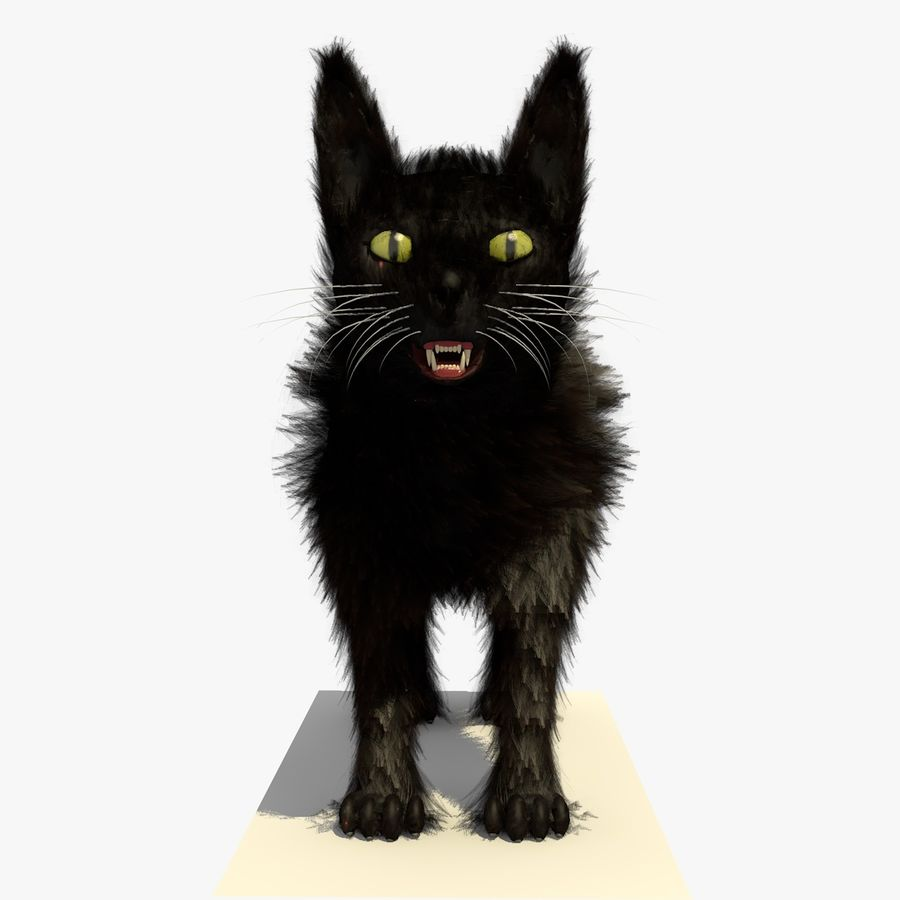 Schwarze Katze mit PELZ royalty-free 3d model - Preview no. 4