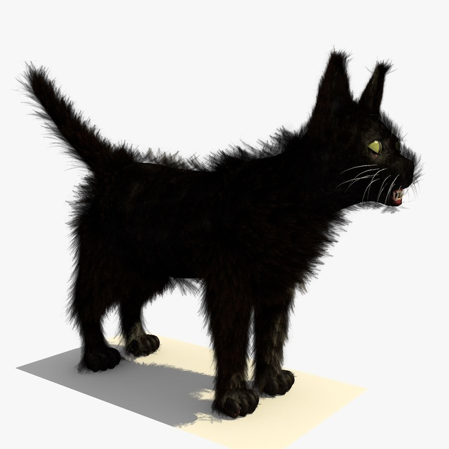 Schwarze Katze mit PELZ royalty-free 3d model - Preview no. 3