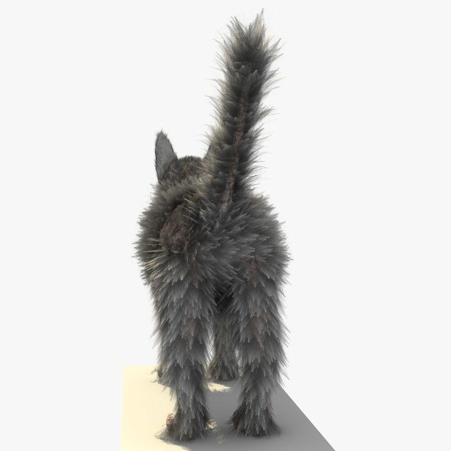 Gatto grigio con PELLICCIA royalty-free 3d model - Preview no. 5