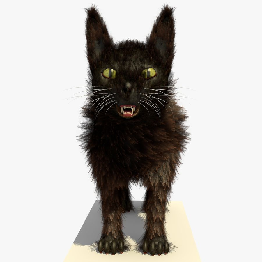 Gato marrom de Havana com PELE royalty-free 3d model - Preview no. 2