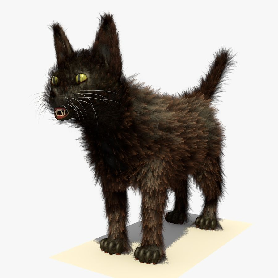 Gato marrom de Havana com PELE royalty-free 3d model - Preview no. 3