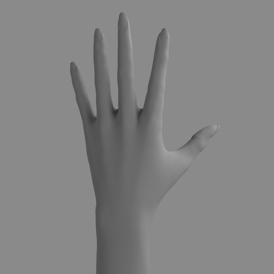 Main féminine royalty-free 3d model - Preview no. 3