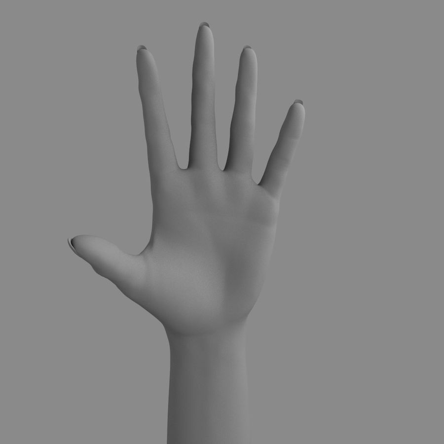 Main féminine royalty-free 3d model - Preview no. 4