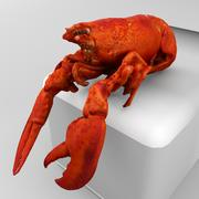Gekookte Kreeft 3d model