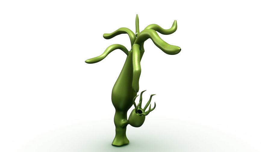 Hydra royalty-free 3d model - Preview no. 4