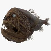 송곳니 물고기 2 3d model
