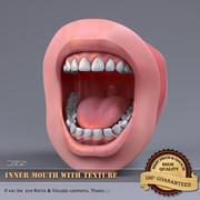 Wewnętrzne usta z teksturą 3d model