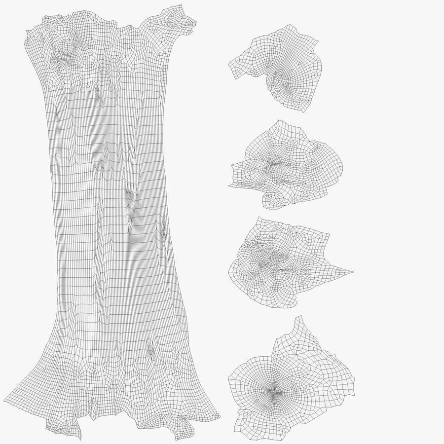 解剖学-人間の大腿骨 royalty-free 3d model - Preview no. 11
