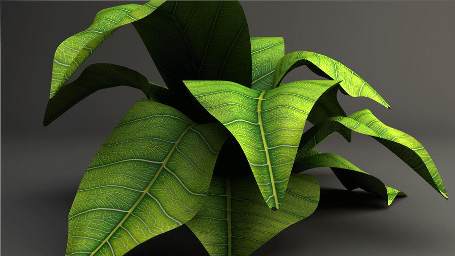 绿叶植物 royalty-free 3d model - Preview no. 4