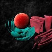 Cell Nucleus 3d model