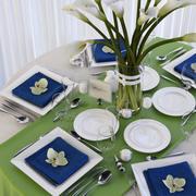 Set Dinner Table 3d model
