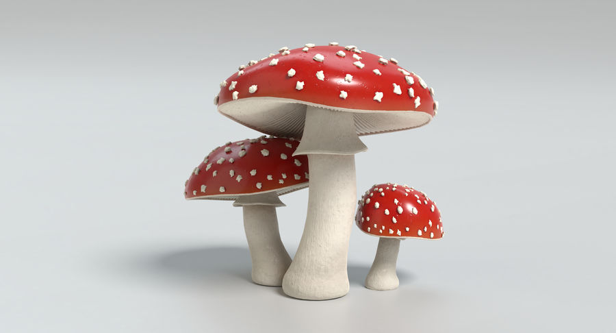 Amanita Mushrooms royalty-free 3d model - Preview no. 21