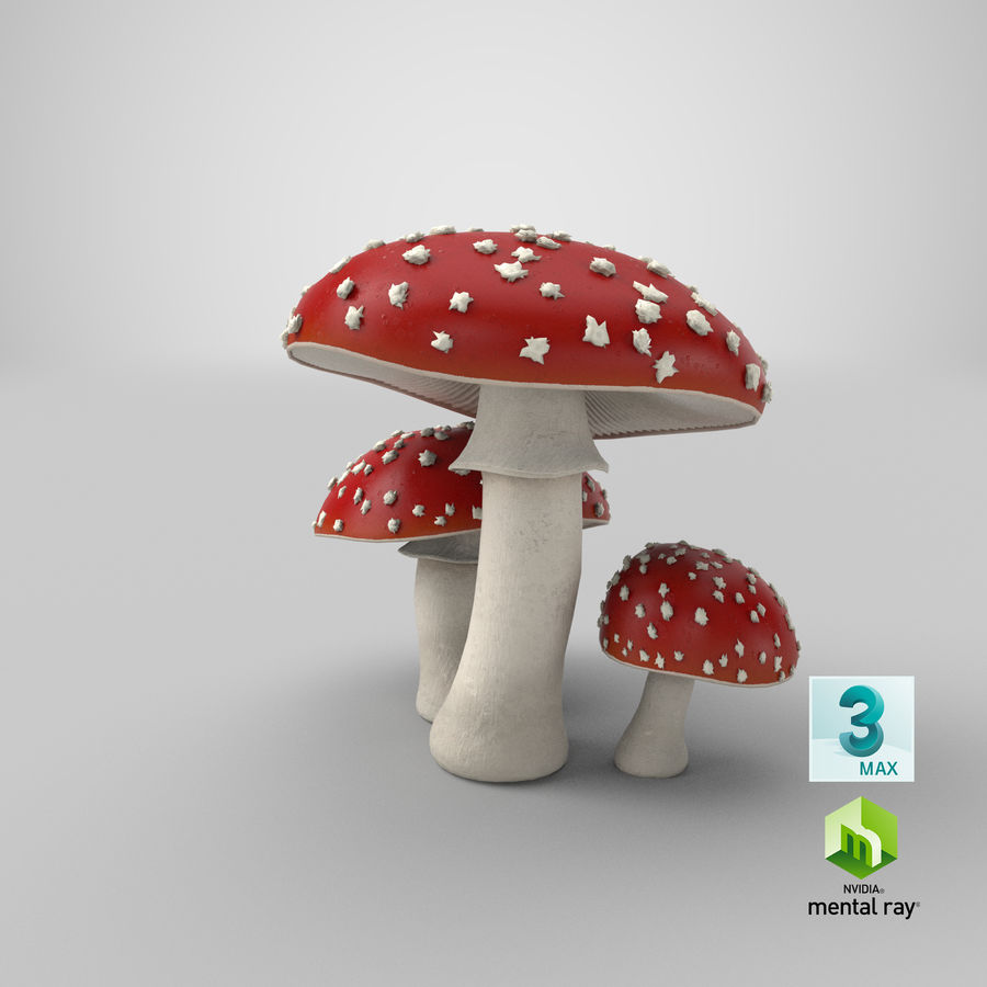 Amanita Mushrooms royalty-free 3d model - Preview no. 36