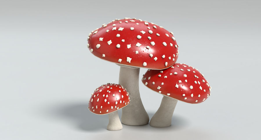 Amanita Mushrooms royalty-free 3d model - Preview no. 8