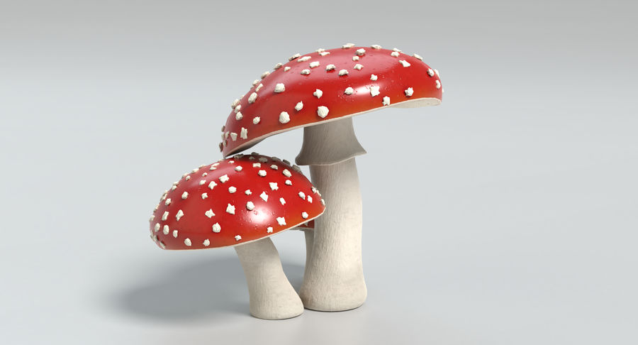 Amanita Mushrooms royalty-free 3d model - Preview no. 11