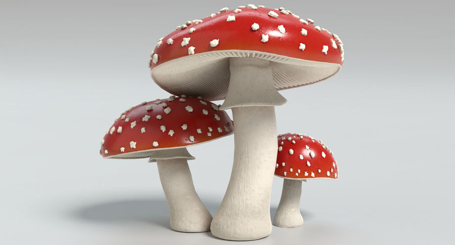 Amanita Mushrooms royalty-free 3d model - Preview no. 5