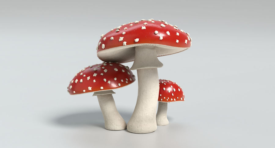 Amanita Mushrooms royalty-free 3d model - Preview no. 9