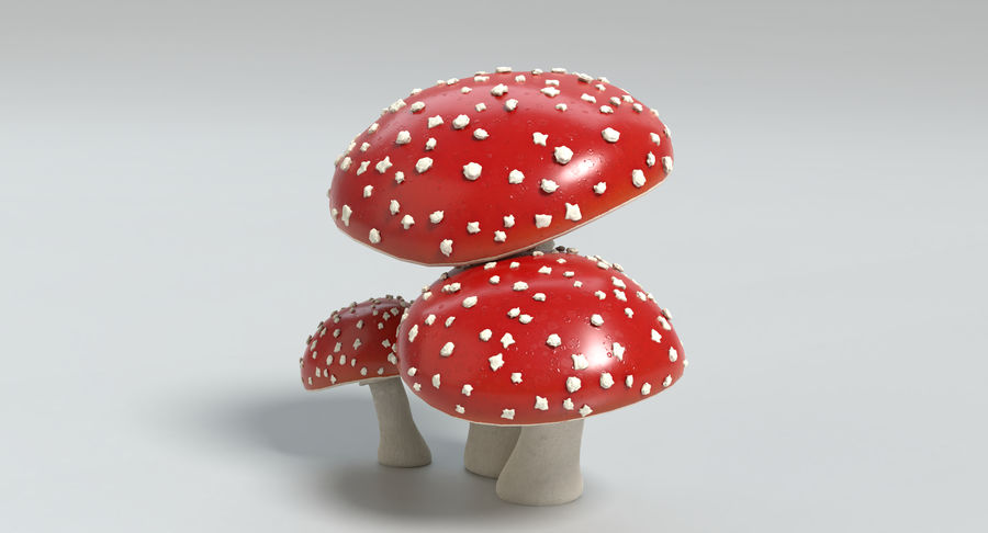 Amanita Mushrooms royalty-free 3d model - Preview no. 13